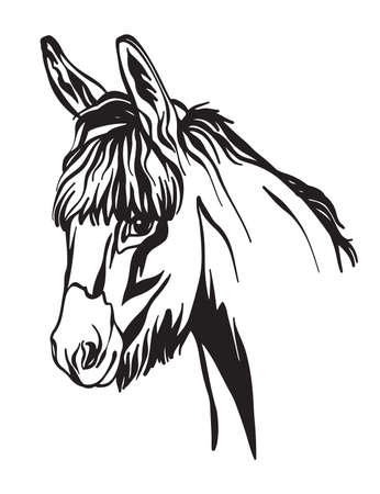 Decorative portrait of donkey vector illustration in black color isolated on white background. Engraving template image for design, print and tattoo. 스톡 콘텐츠 - 156587716