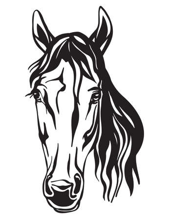 Beauty portrait of horse vector illustration in black color isolated on white background. Engraving template image for design, print and tattoo.