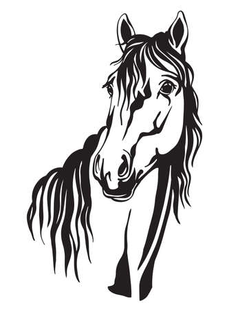 Decorative portrait of horse vector illustration in black color isolated on white background. Engraving template image for design, home decor, porcelain, print and tattoo.
