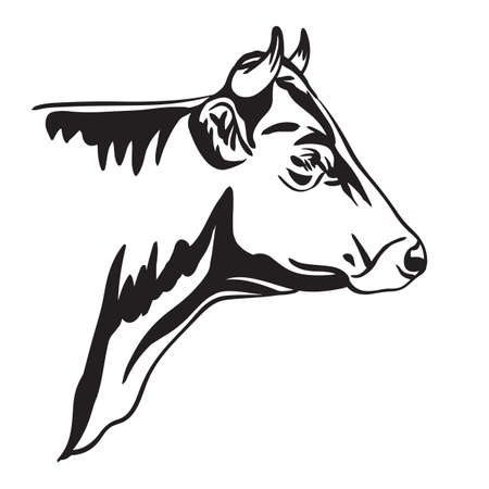 Abstract portrait of bull vector illustration in black color isolated on white background. 스톡 콘텐츠 - 156979574
