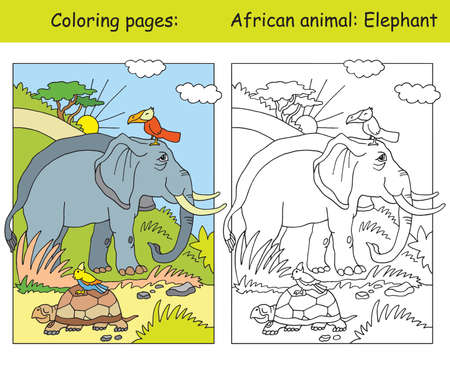 Vector coloring pages with cute elephant in african area. Cartoon isolated colorful illustration. Coloring and colored image of elephant. For coloring book, design, preschool education, print and game.