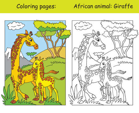 Vector coloring pages with cute giraffe family in african area. Cartoon isolated colorful illustration. Coloring and colored image of giraffe. For coloring book, design, preschool education, print and game.