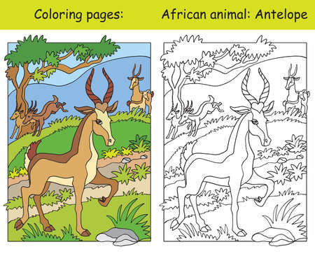 Vector coloring pages with cute antelope in african area. Cartoon isolated colorful illustration. Coloring and colored image of antelope. For coloring book, design, preschool education, print and game.