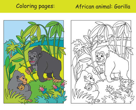 Vector coloring pages with cute gorilla family in african area. Cartoon isolated colorful illustration. Coloring and colored image of gorilla. For coloring book, design, preschool education, print and game.