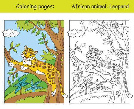 Vector coloring pages with cute leopard in african area. Cartoon isolated colorful illustration. Coloring and colored image of leopard. For coloring book, design, preschool education, print and game. Ilustração