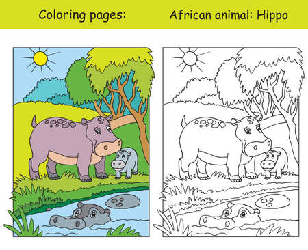 Vector coloring pages with cute hippo family in african area. Cartoon isolated colorful illustration. Coloring and colored image of hippo. For coloring book, design, preschool education, print and game.