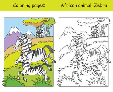 Vector coloring pages with cute zebra family in african area. Cartoon isolated colorful illustration. Coloring and colored image of vulture. For coloring book, design, preschool education, print and game. Ilustração