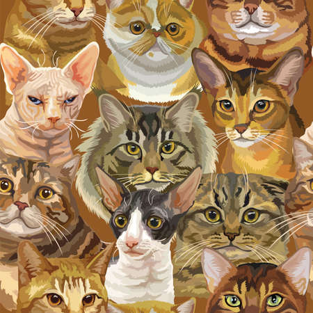 Vector semless pattern with realistic cats breeds portraits. Colorful background for creating textiles, wallpaper, paper, wedding invitation, design, print, linen. Vector Illustration