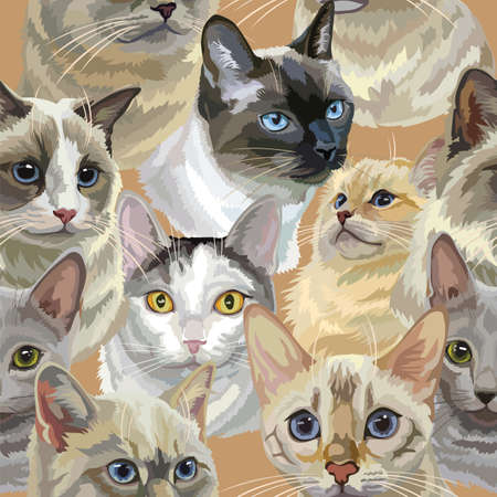 Vector semless pattern with realistic cats breeds portraits. Colorful background with cats heads for creating textiles, wallpaper, paper, wedding invitation, design, print, linen. Vector Illustration