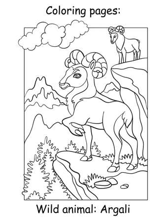Vector coloring pages with cute argali in mountain area. Cartoon contour illustration isolated on white background. Stock illustration for coloring book, preschool education, print and game.