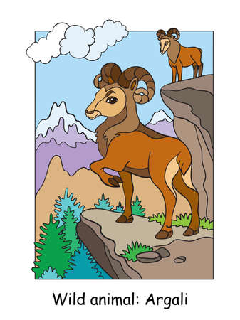 Vector colorful illustration with cute argali in mountain area. Cartoon contour illustration isolated on white background. Stock illustration for coloring book, preschool education, print and game. Ilustracja