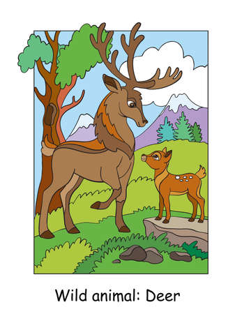 Vector colorful illustration with cute deer papa and cub in mountain area. Cartoon contour illustration isolated on white. Stock illustration for coloring book, preschool education, print and game.