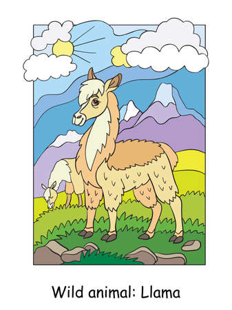 Vector colorful illustration with cute llama in mountain area. Cartoon contour illustration isolated on white background. Stock illustration for coloring book, preschool education, print and game. Zdjęcie Seryjne - 160616736