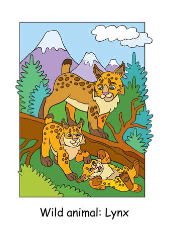Vector colorful illustration with cute lynx mum and cubs in mountain area. Cartoon contour illustration. Stock illustration for coloring book, preschool education, print and game. Ilustracja
