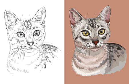 Vector illustration portrait of Egyptian Mau Cat