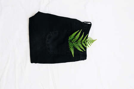 green fern leaf on black jeans on a light background Stock Photo