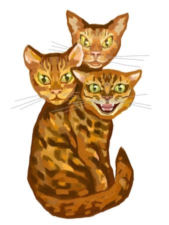 Cat with three heads illustration Stock Photo