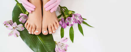 Beautiful perfect female skin legs feet top view with tropical flowers and green palm leaf. Hands of beautician in pink gloves. Nail polish, care and clean, spa pedicure treatment in white. Copy space