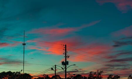 pink clouds in the blue sky beyond wires and tree tops as the sun sets Stock Photo