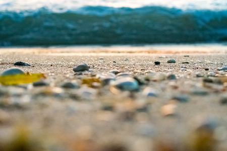 Close up of seashells and pebbles on the sandy shore with waves in the background