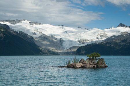 Tree growing on a small  volcanic island at Garibaldi Lake