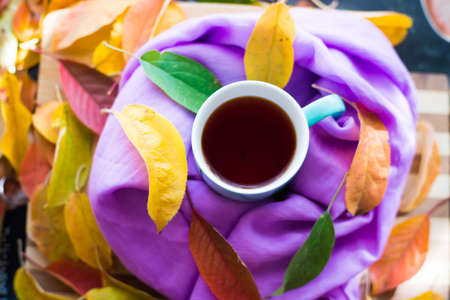 Hot tea in a blue mug on a wooden background, the tea is wrapped in a lilac scarf and autumn leaves, yellow, red, gold, are poured.
