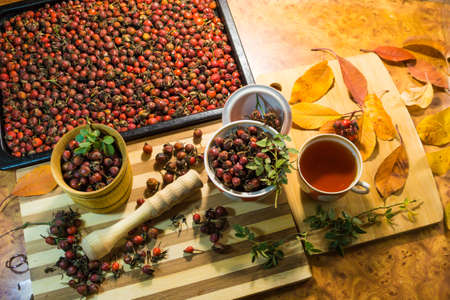 Harvest of juicy rose hips on a baking sheet and rose hip tea close-up.