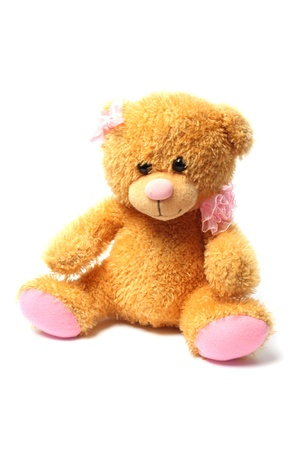 Teddy bear isolated on white background photo