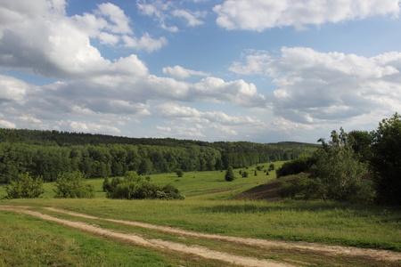 Landscape  forest, meadows, river  Beautiful Ukraine Stock Photo