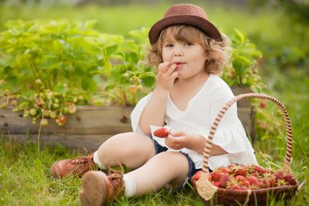 blond krulhaar peutermeisje met de mand vol met stawberry, eten en plezier maken op een familieboerderij. Warme zomerdag. Horizontale foto natuurlijk licht. Stockfoto
