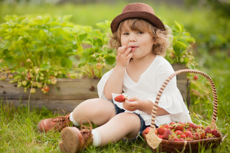 Niña pequeña del pelo rubio del rizo con la cesta llena de stawberry, comiendo y divirtiéndose en una granja de la familia. Cálido día de verano. Foto de luz natural horizontal. Foto de archivo - 81511929