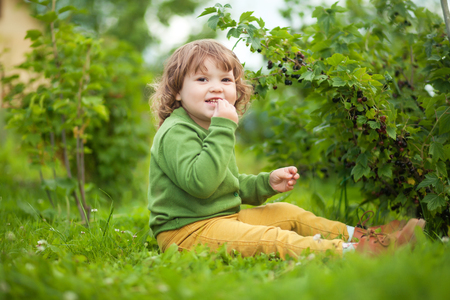 Adorable happy little curly girl sitting on a grass in the garden, eating black currant. Sunny summer day