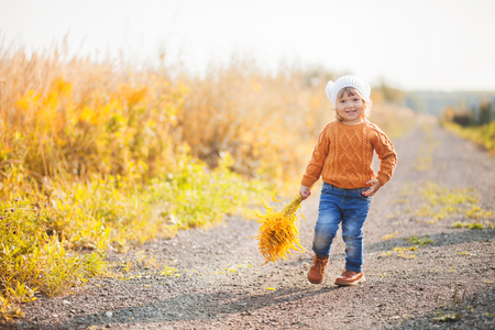 Cute toddler girl wearing sweater, knitted hat and scarf, walking outdoors. fall, red and yellow leaves Stock Photo