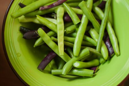 raw multicolored green and purple common beans close up on a plate, vegetarian healthy food, french bean, fagiolini