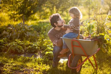 家族は田舎の農場で働きます。幼児庭師庭園、秋の収穫、秋のシーズンで一緒に、楽しんで少しヘルパー