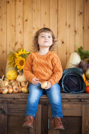 Cute happy little kid with different vegetable harvest, autumn, wood background, countryside Stock Photo