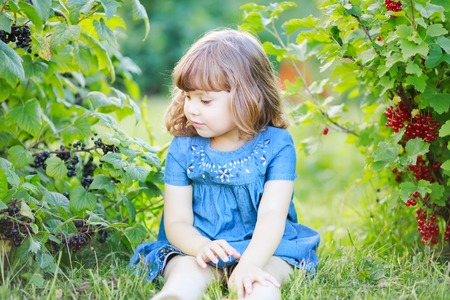 Adorable happy little girl at the garden, picking and eating red and black currant from the bush and smiling, childhood at the farm, healthy food from the garden.
