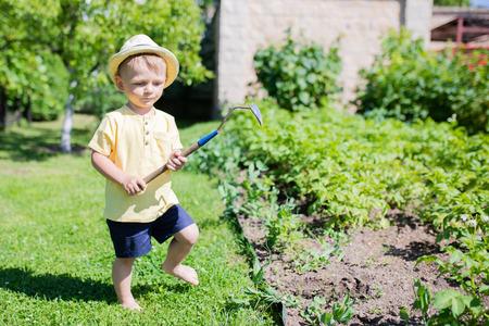 Toddler boy farmer working in the garden, cultivating garden bed. Little helper