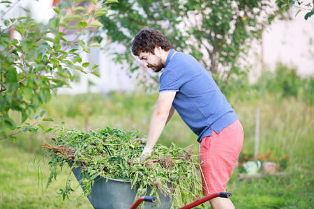 Man pulling out weeds at his huge garden during spring time, clearing garden, seasonal work in the garden