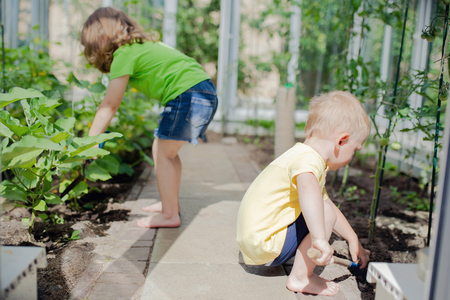 Cute toddler boy and girl (brother and sister or friends) working in the greenhouse, digging with little shovel