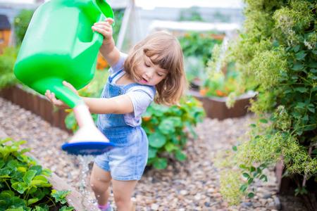 Adorable girl watering plants in the garden at summer, seasonal garden works. Little gardener