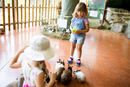 Adorable little girl playing with rabbit at the petting zoo, child and farm animals, friends of nature Imagens