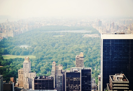 urban jungle: New York City Central Park in the fog, aerial view