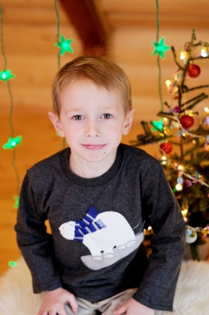 Portrait of short-haired toddler boy in Christmas decorations photo