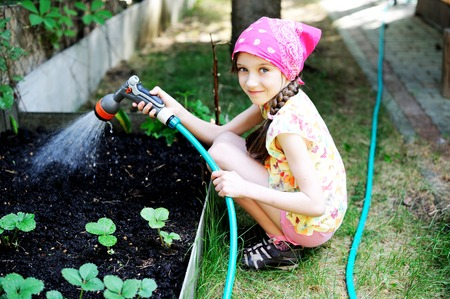 Aadorable brunette kid girl, watering the plants, from hose spray in the garden at the backyard of the house on a sunny summer evening