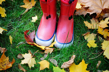 Autumn fall concept with colorful leaves and rain boots outside. Close up of kid n feet walking in red boots. photo