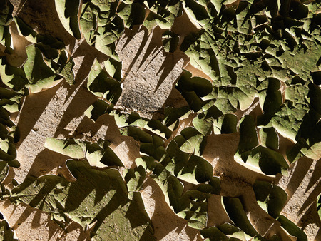 flaked: Flaked green paint on the sunlit plastered wall
