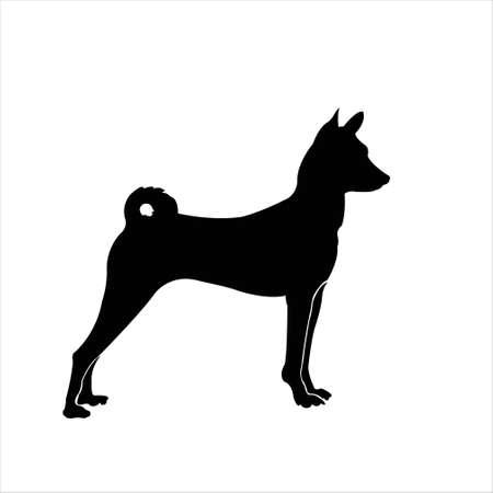 awaken: dog is watching and awaken