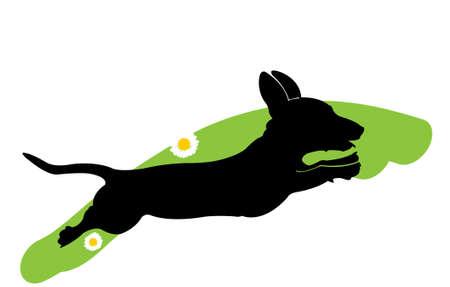 꽃과 녹색 잔디에 사냥개를 실행의 실루엣