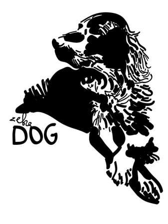 setter: illustration of stylized irish setter dog - black and white shadows and lines Illustration